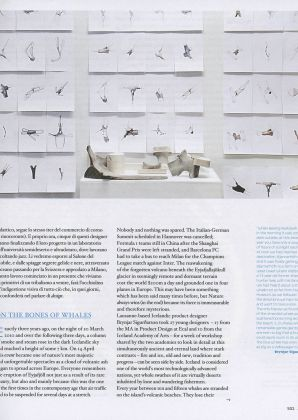 Abitare Article Iceland Whale Bone Project 4130