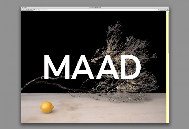 ma-ad.ch master art direction website 7411